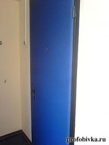 синяя обивка двери входной