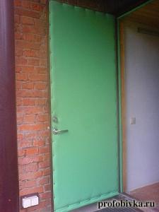 фото салатовой обивки двери с валиком