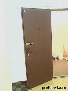 фото обитых входных дверей