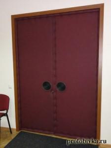 обивка офисной двери