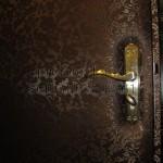 дизайнерская обивка двери с узорами